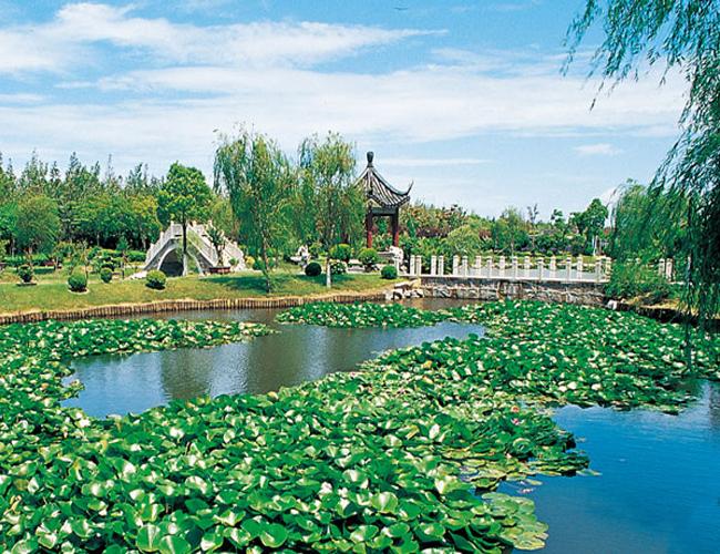 上海滨海古园